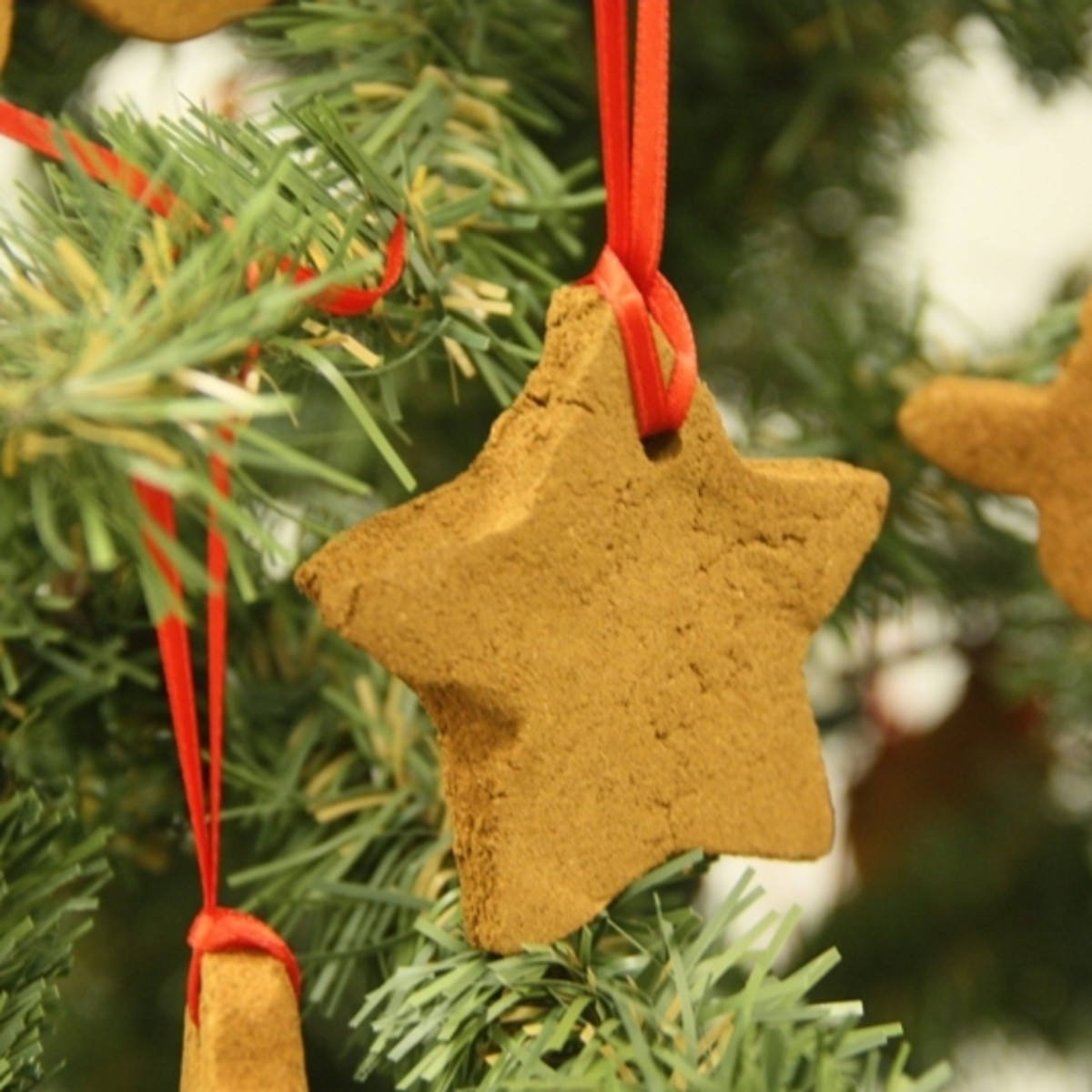 Star Hanging on Tree