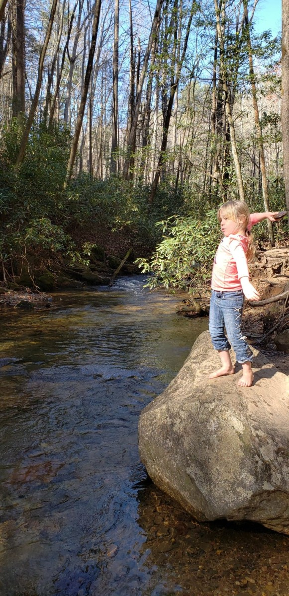 The Raven Cliff Falls trail provides lots of opportunities for kids (or dogs) to splash around in the water, skip stones, or toss rocks into the creek.