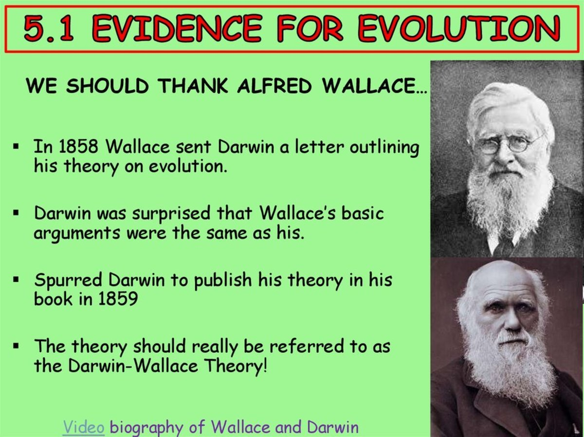 Darwin and Wallace: And The Theory of Evolution