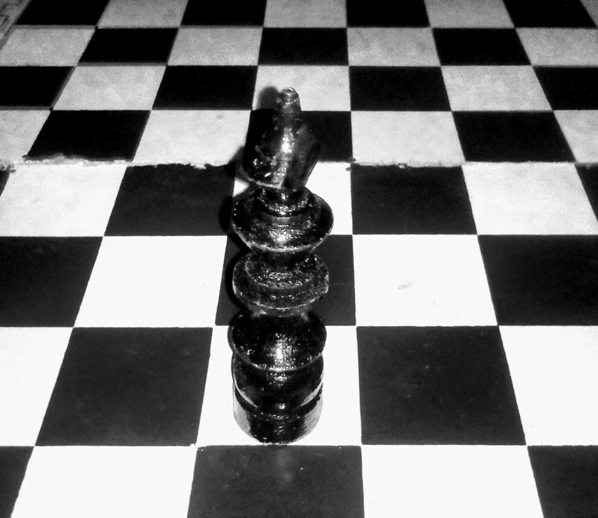 Chess: My Story, My Gameplay