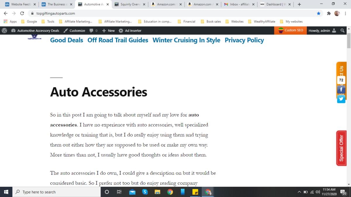 My first niche website