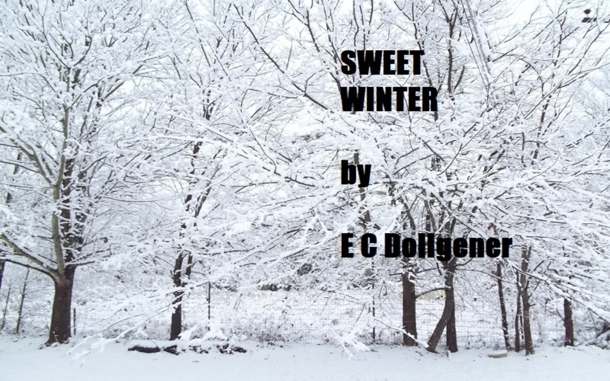 Sweet Winter - a short story by E C Dollgener