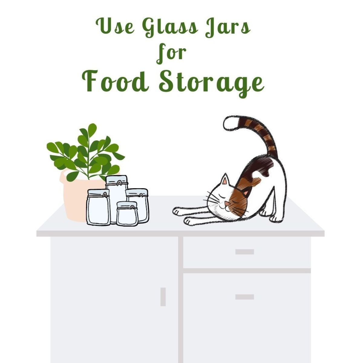 Glass jars are great for food storage, flowers, and herbs!