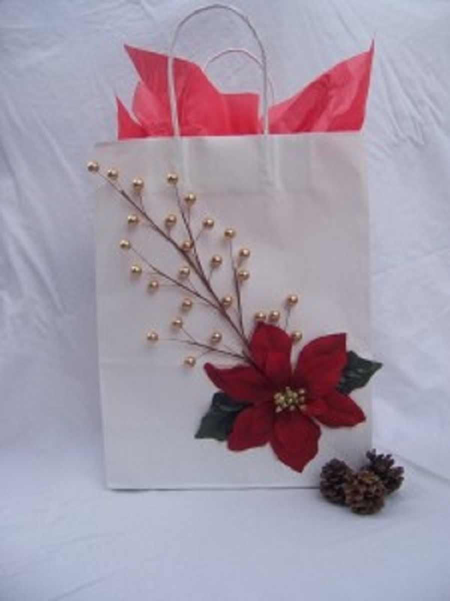 cheap-o-chic-holiday-gift-wrap-ideas
