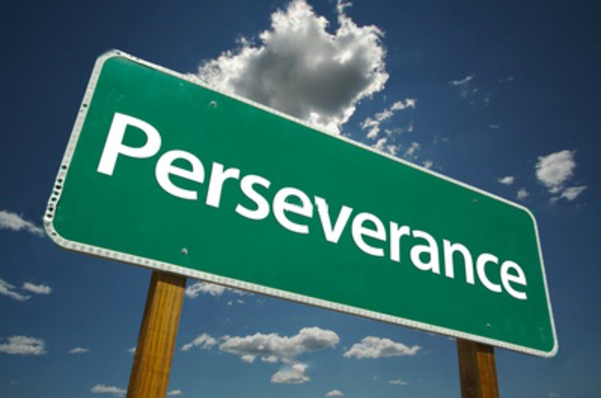 """The law of """"perseverance"""" and the habit of """"synergies"""" create the sixth vital formula that leads to success."""