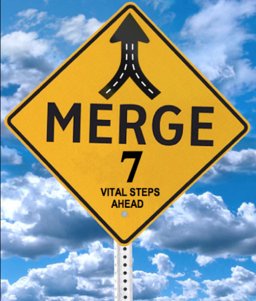 7 Vital Steps for the Venturous