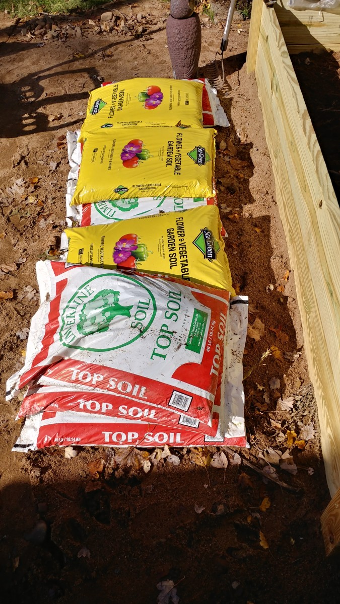 best-soil-for-raised-beds-grow-great-vegetables
