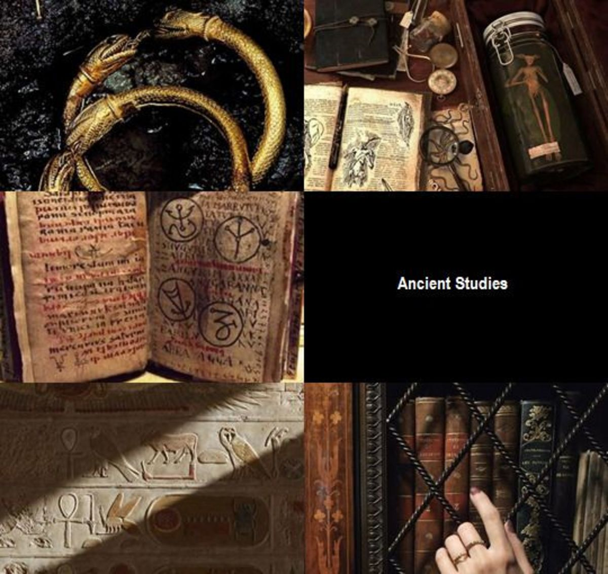 Ancient Studies in Harry Potter