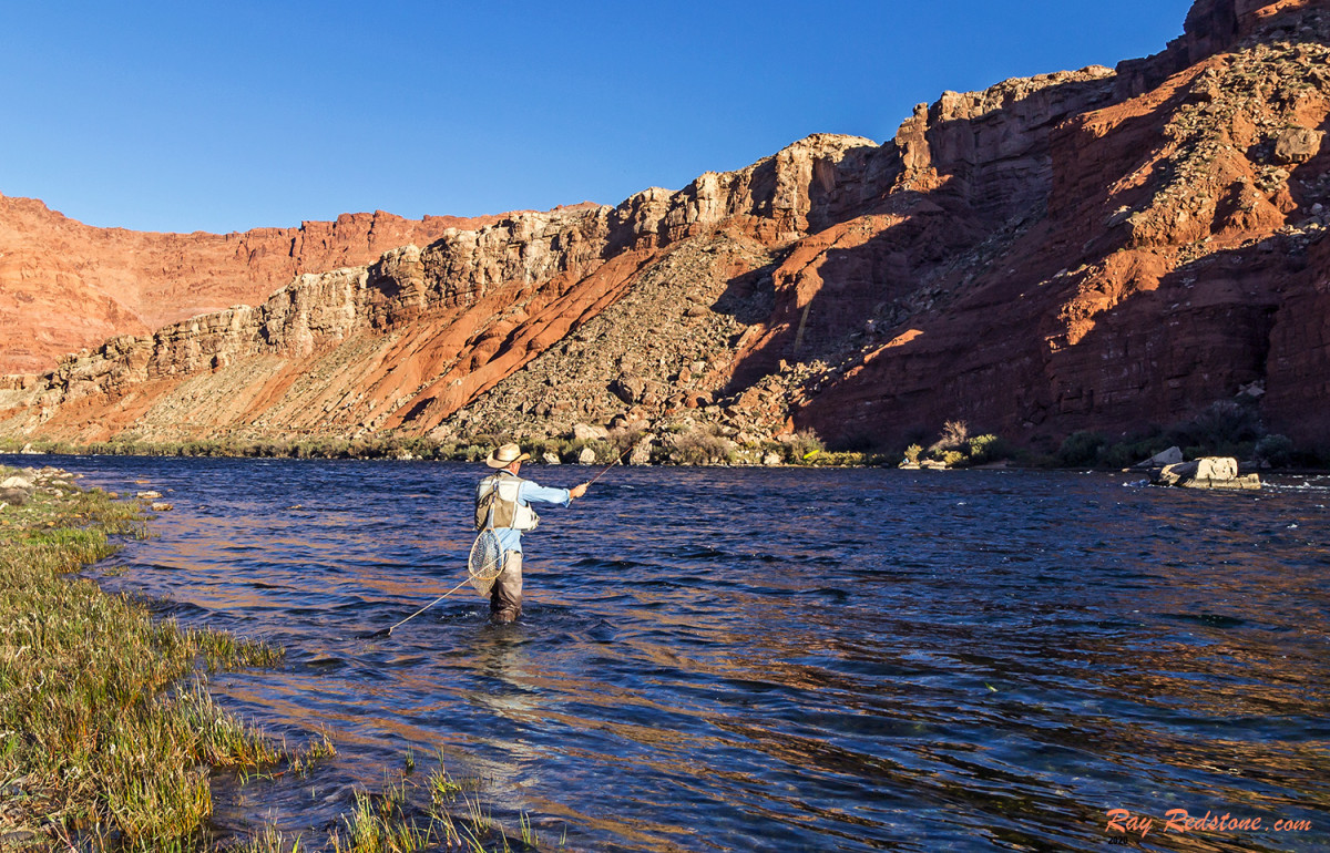 The author Fly-Fishing the walk-in section of Colorado River at Lee's Ferry.
