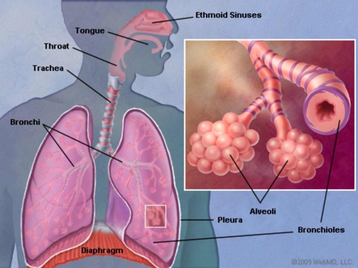 early-signs-of-lung-cancer