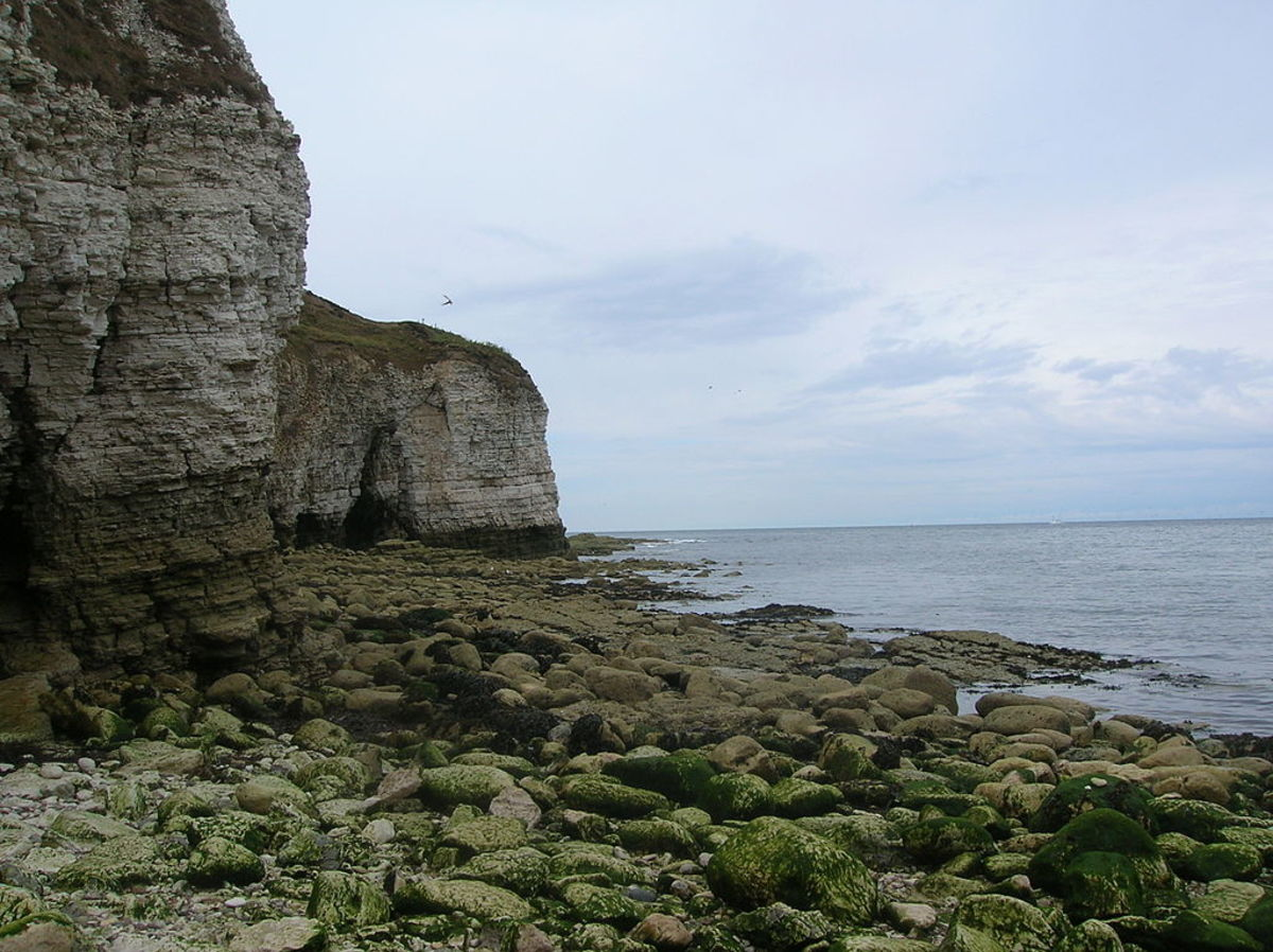 Beach and Cliffs at Flamborough Head