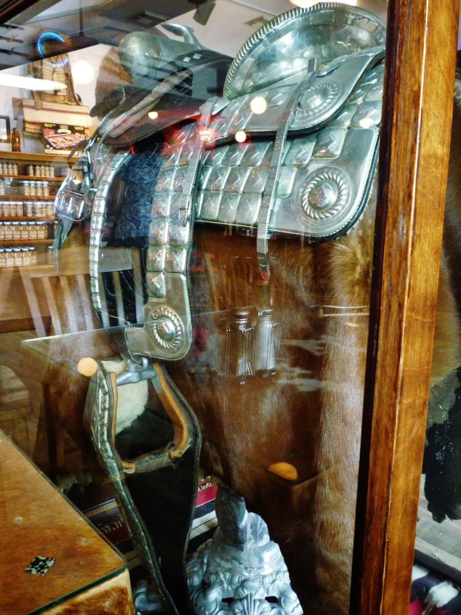 Mounted silver saddle behind the glass enclosure.