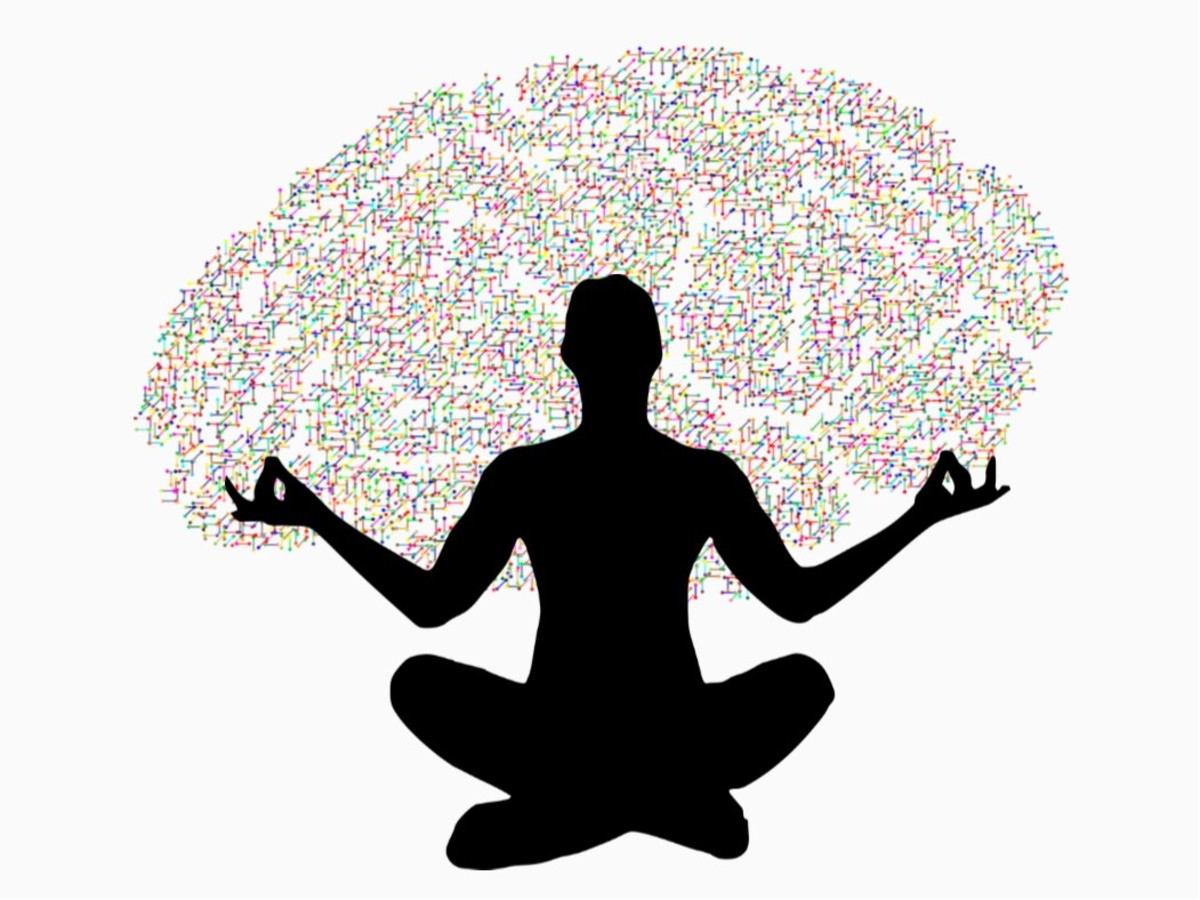 Yogi Mental Capabilities