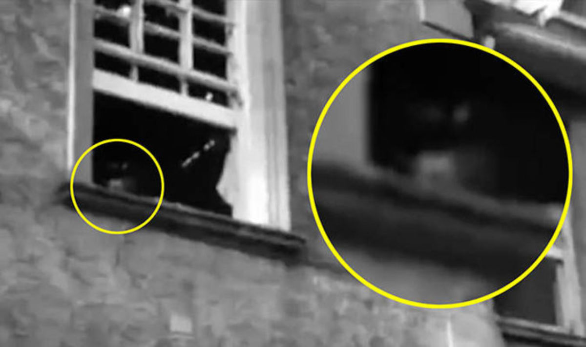 Ghost Hunters caught an image of a spirit in the window of a hospital they were investigating.