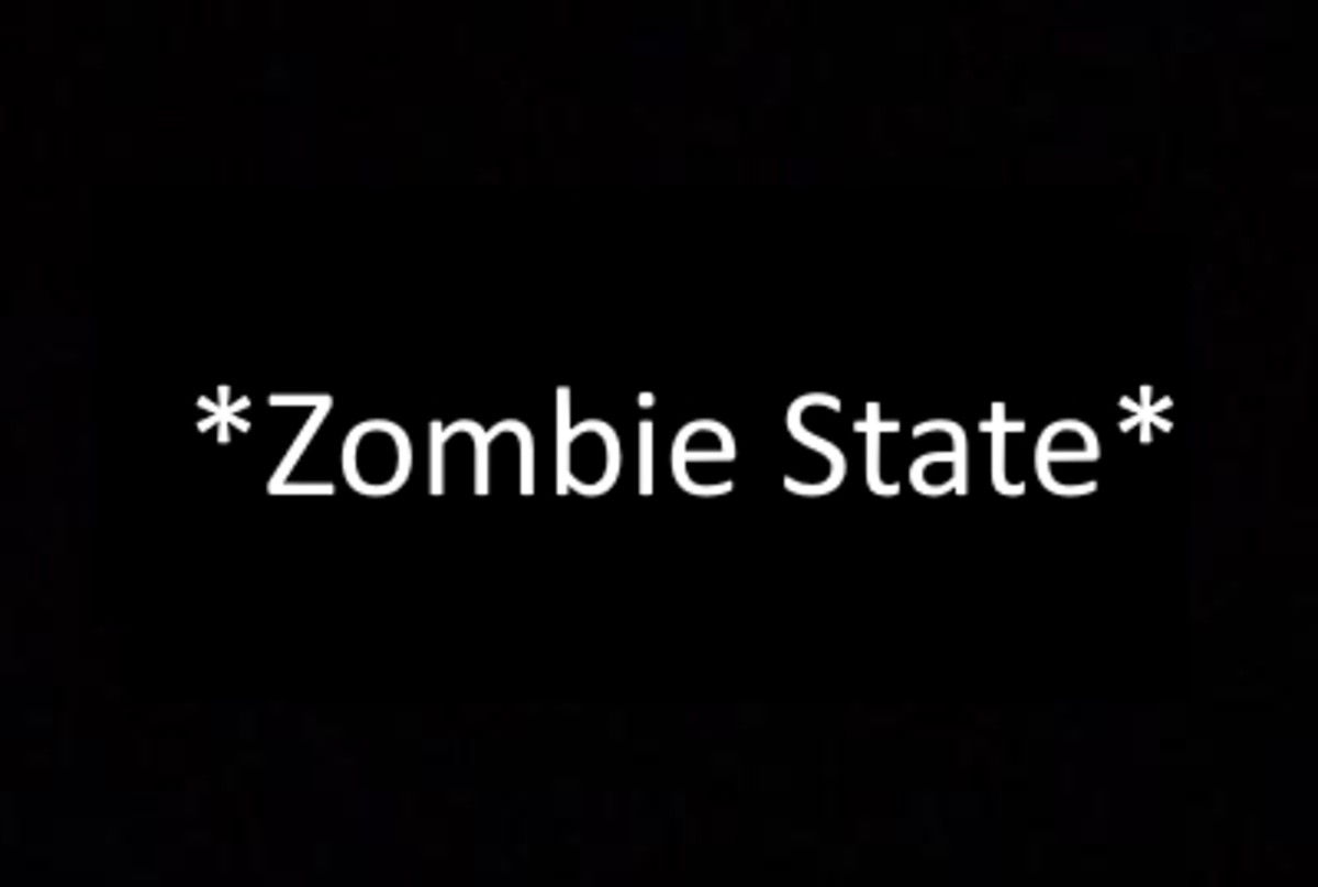 *Zombie State*
