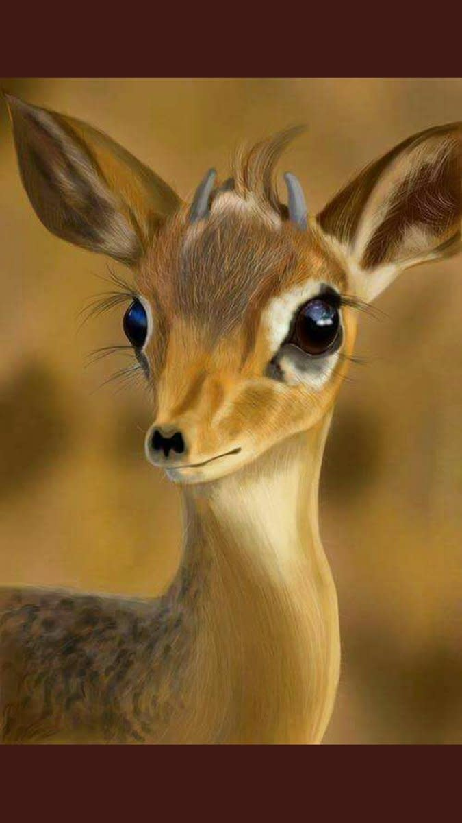Goitered Gazelle: History, Facts, and Conservation Efforts