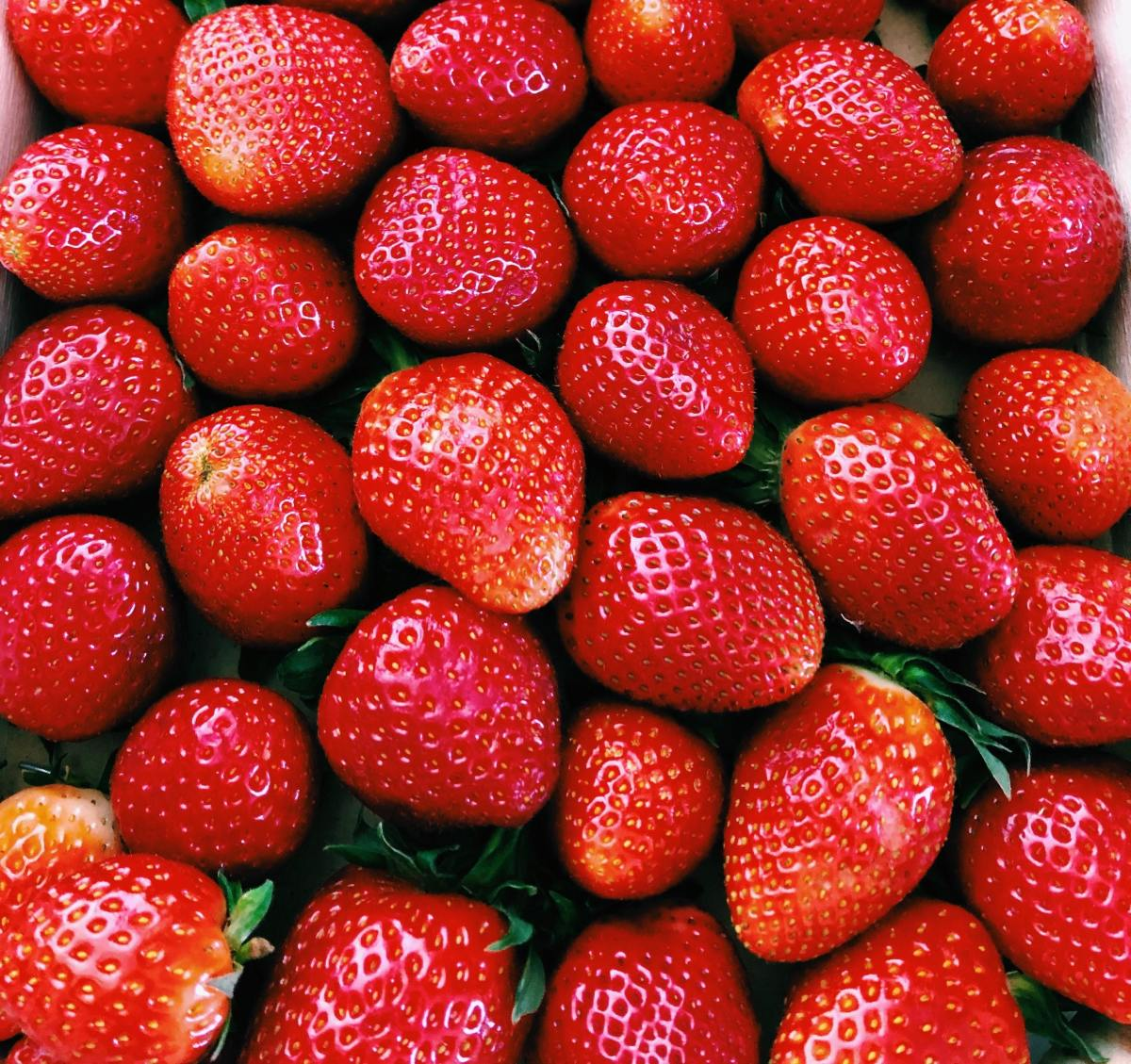 The Humboldt strawberry festival occurs in Tennessee each May, but that's just one of the great state's many annual food festivals.