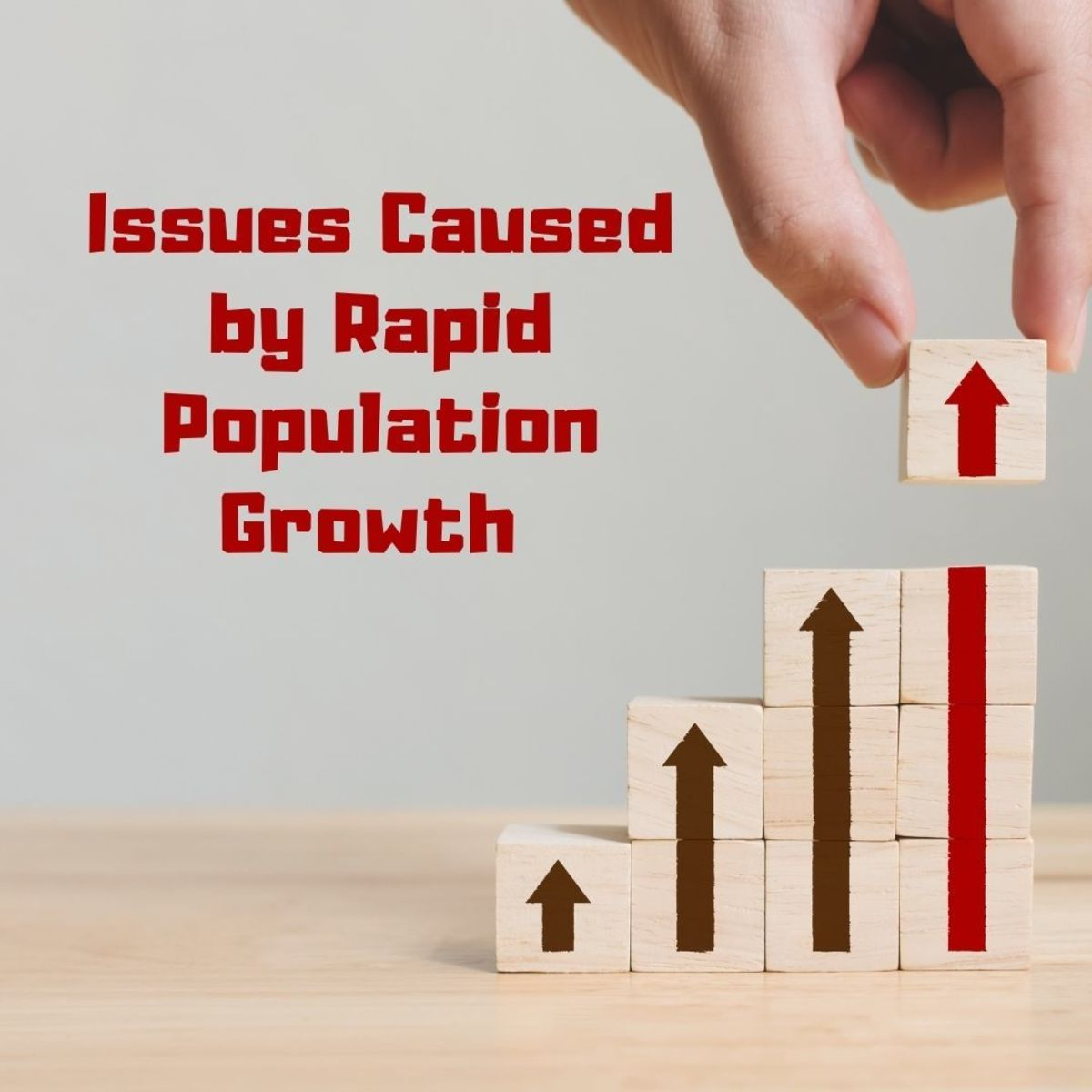 4 Consequences of Rapid Population Growth