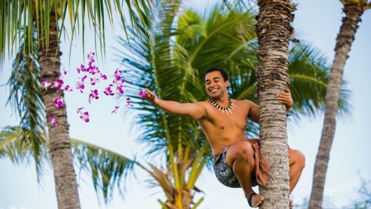 A palm tree climber throws flowers to onlookers.