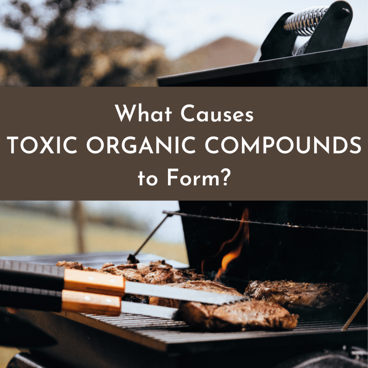 Learn about some of the unusual ways that toxic organic compounds can be formed, such as from barbecuing meat and treating water.
