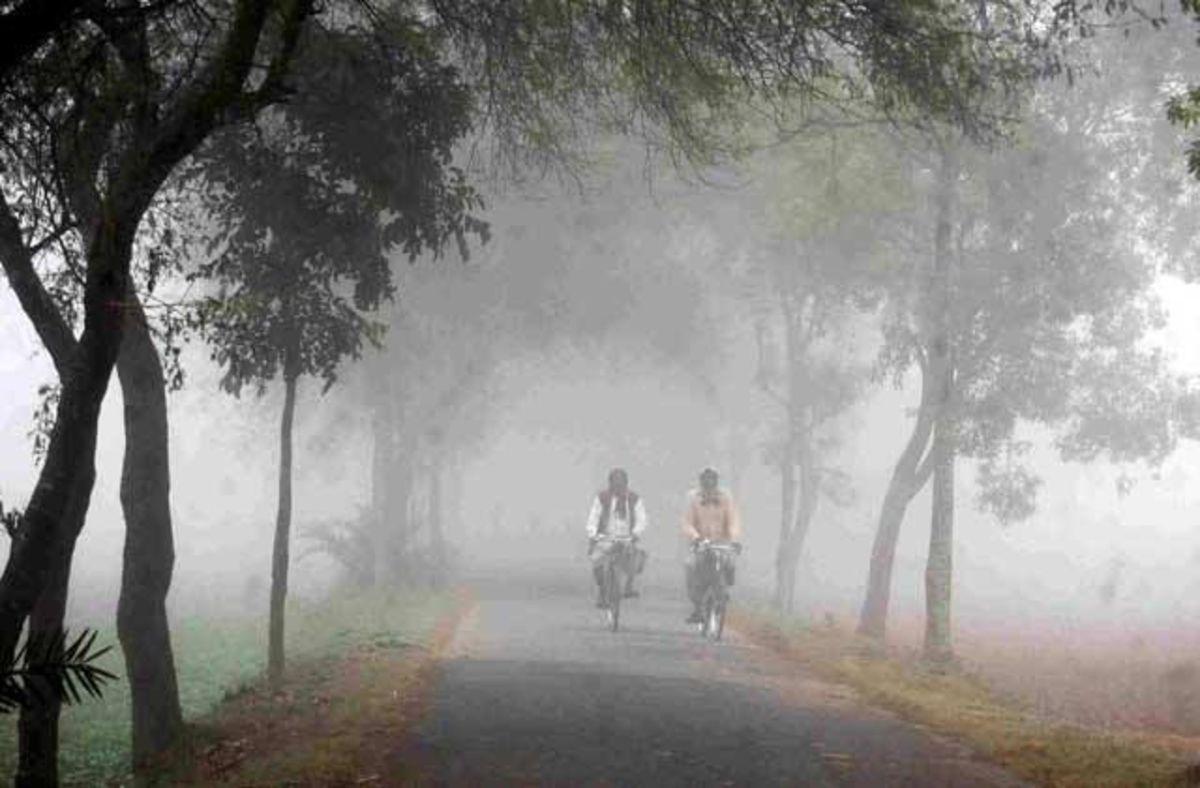 Road side scenario of winter