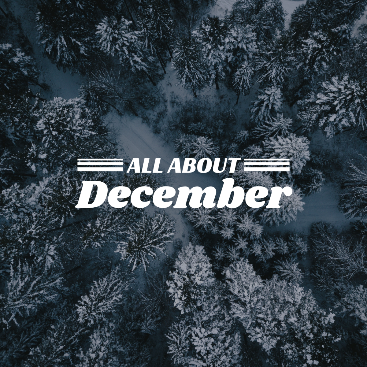 There's more to December than Christmas and New Year's Eve.