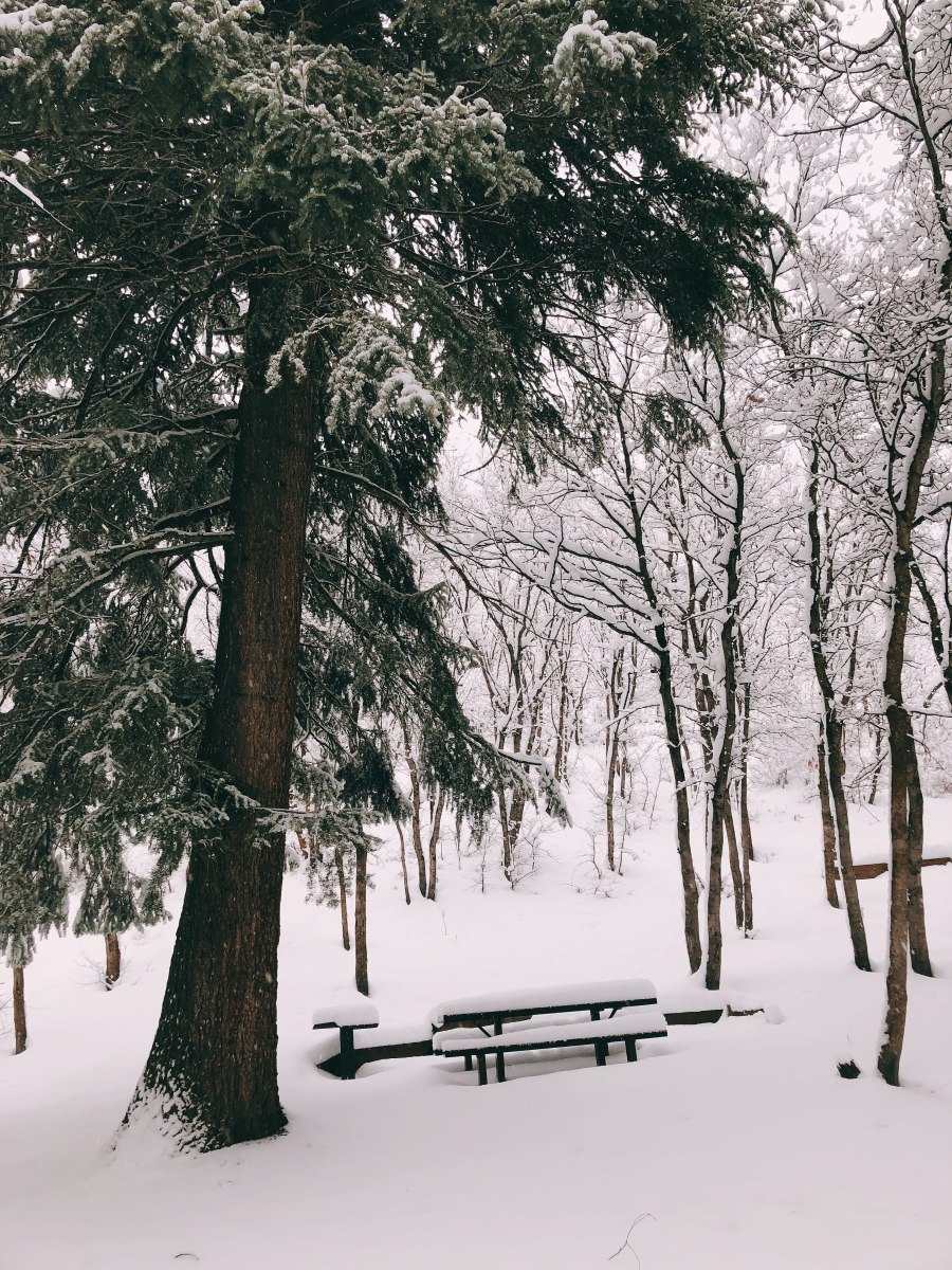 Picnic area is covered with snow.
