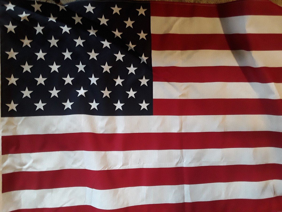 Picture of Author's American Flag