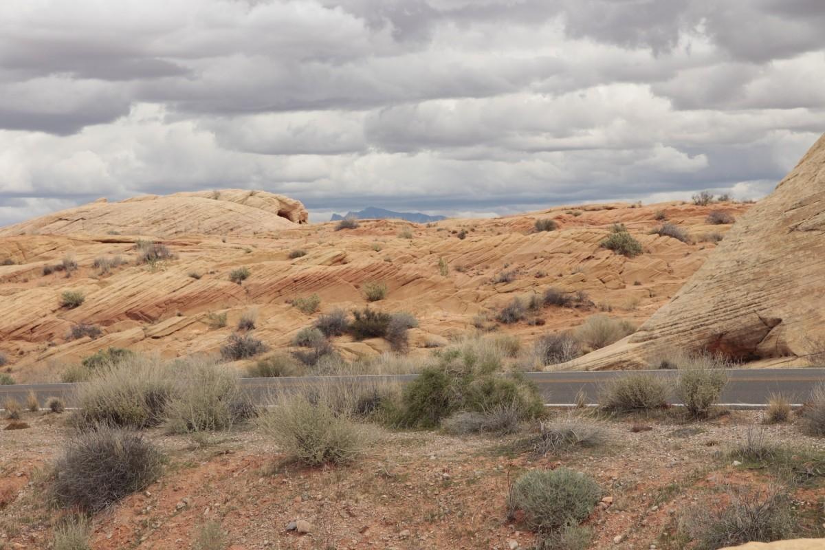 Desert Landscape Cloudy Scenic Sage