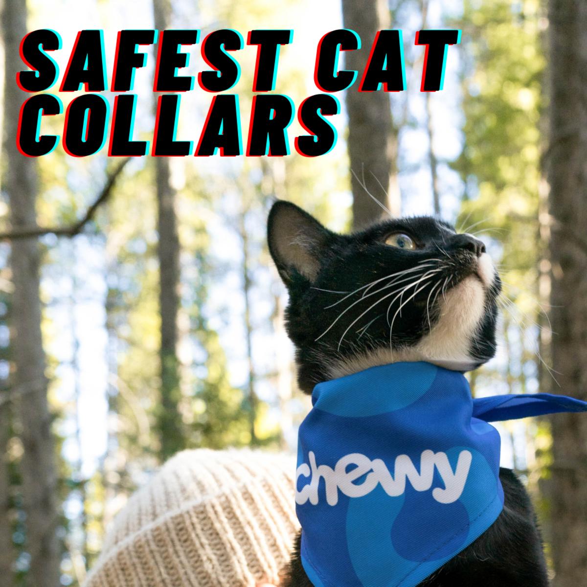 Safest Cat Collars