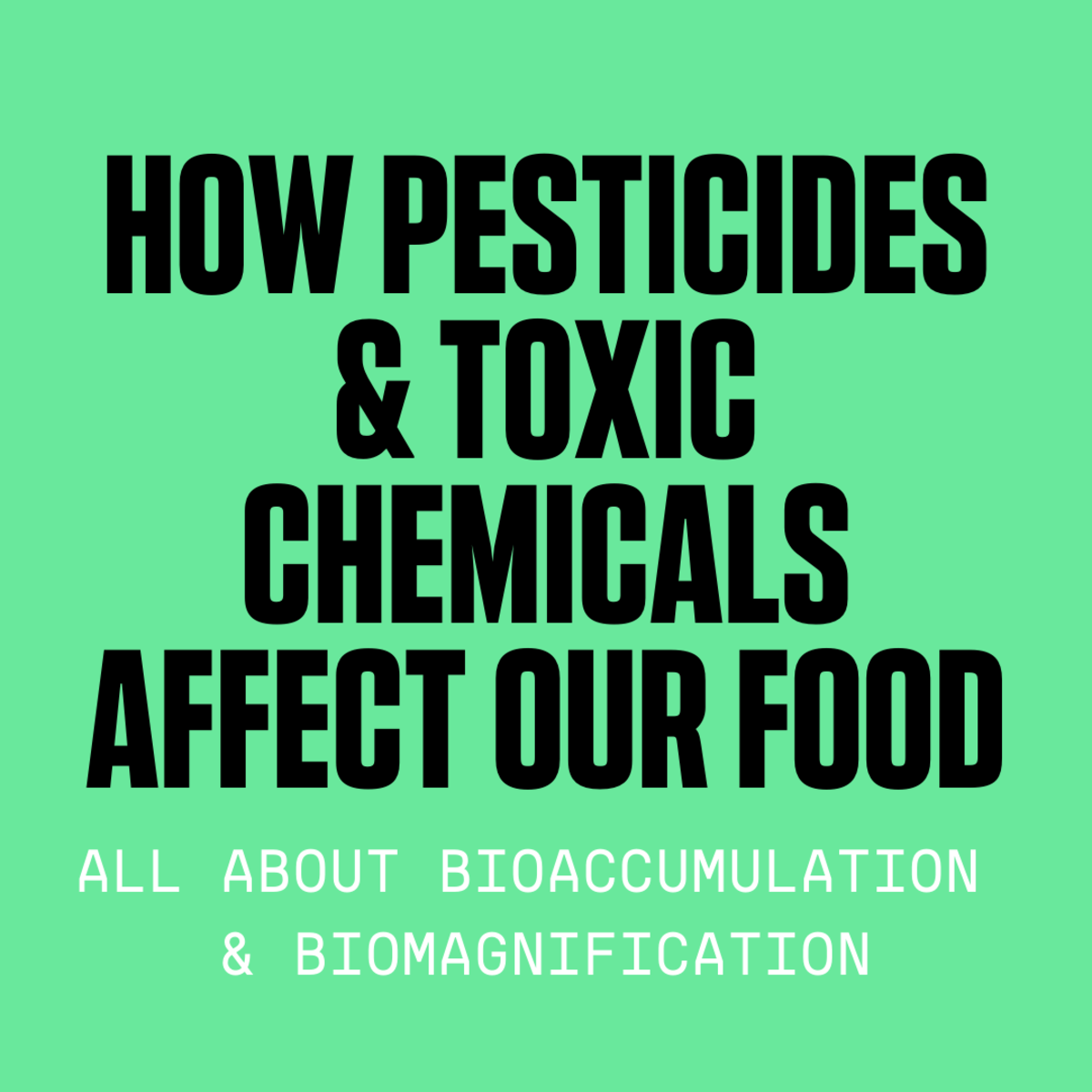 How Bioaccumulation and Biomagnification of Pollutants Affects Our Food Supply