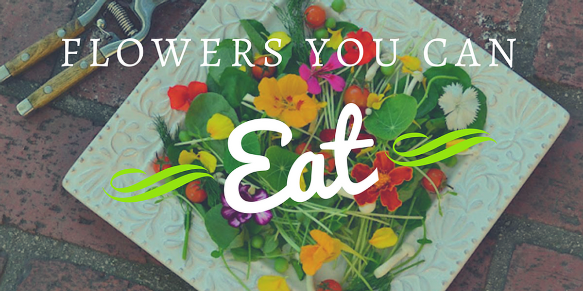 Edible flowers are not only beautiful but also add elegance to many dishes.