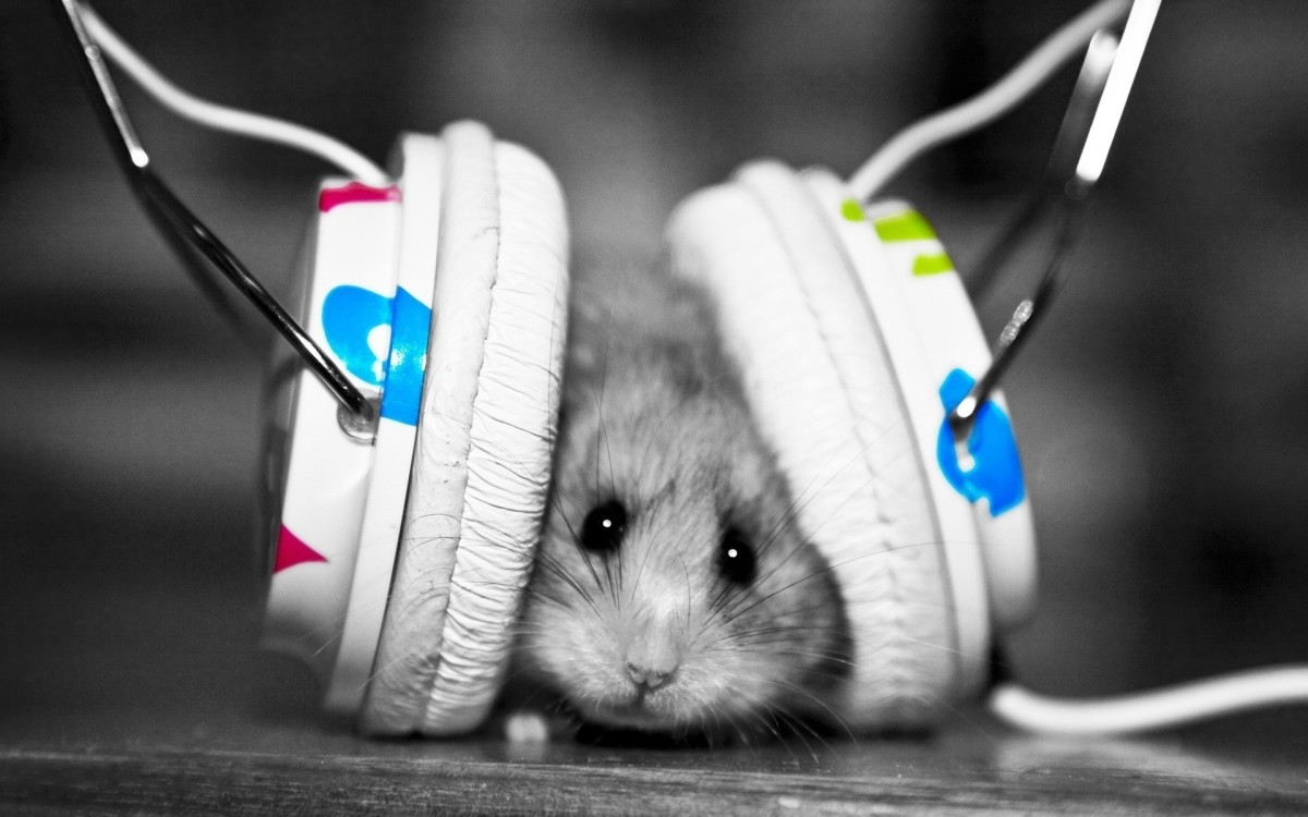 5 benefits of listening to music