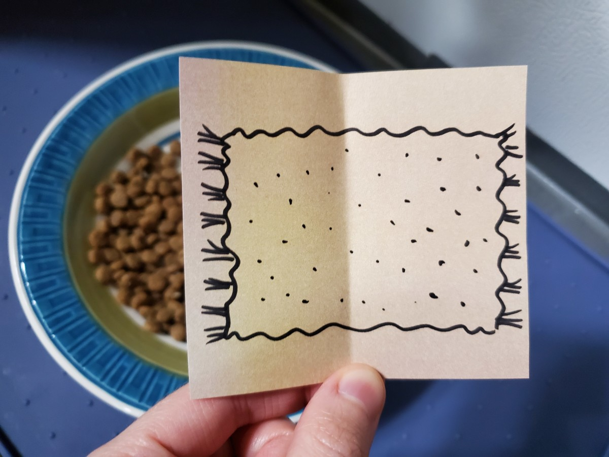 """""""Look at the cat food,"""" got it. So here's the next clue. What on Earth is this a picture of?"""