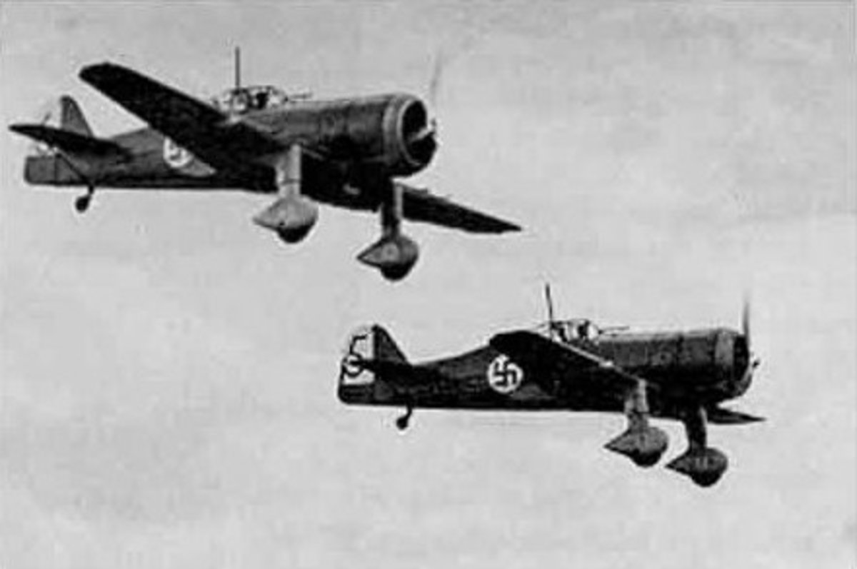 Fokker D XXI planes, The scourge of the skies