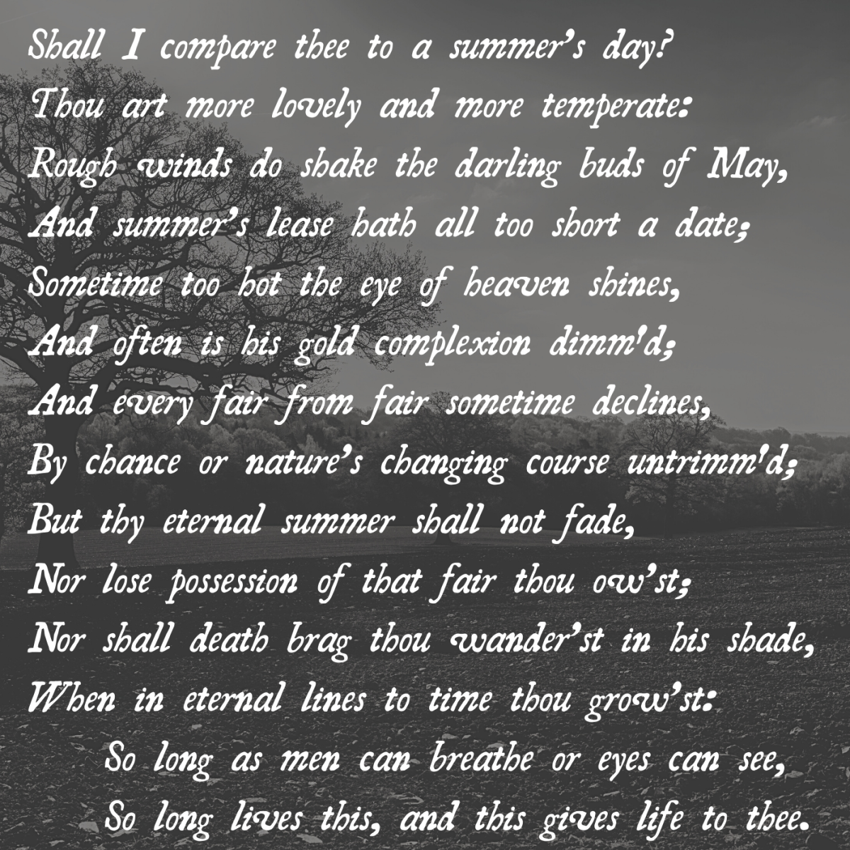 """Pictured above is the full text of """"Sonnet 18,"""" or """"Shall I compare thee to a summer's day?"""""""