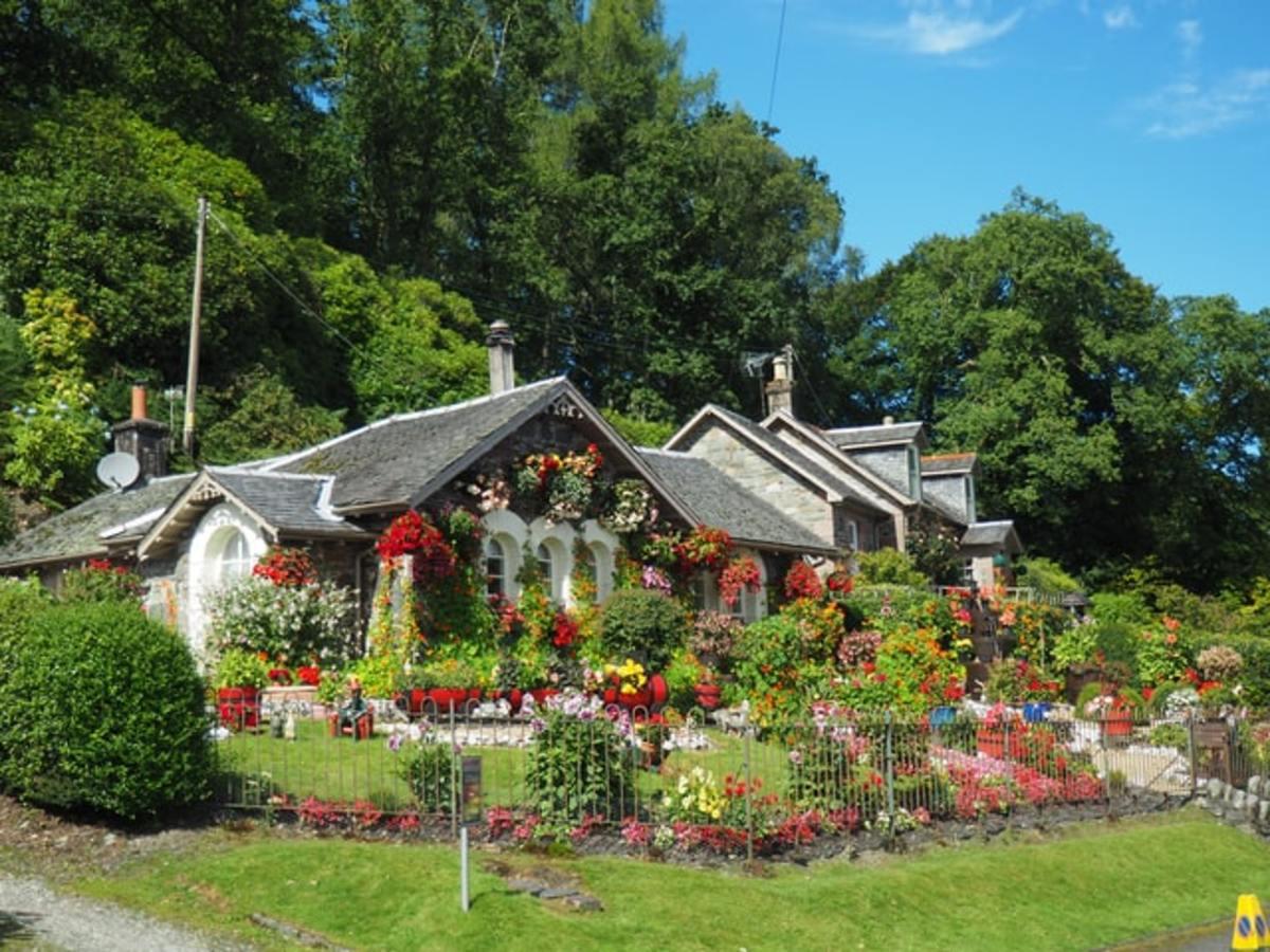 A lovely garden