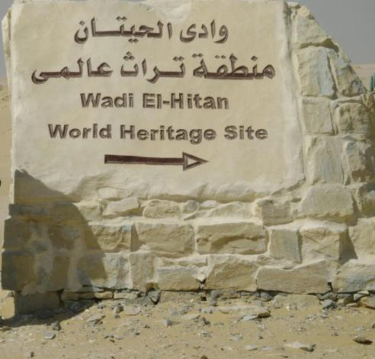 explore-wadi-al-rayan-protected-area-egypt