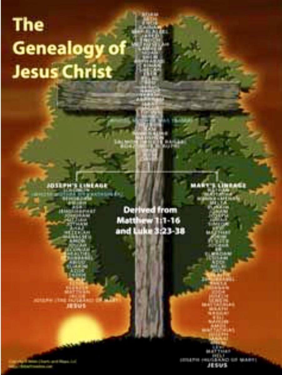 Daily Mass Reflections - 12/17