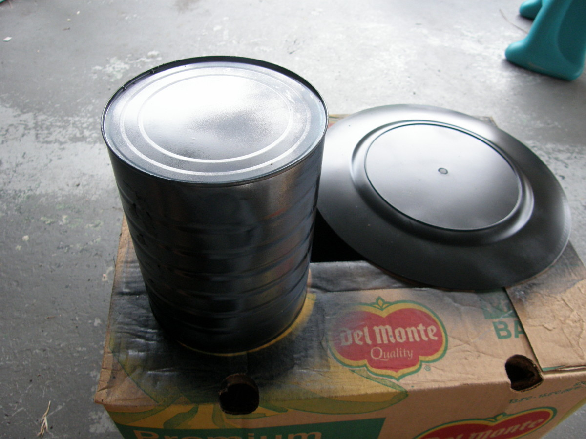 Spray paint both the coffee can and the plate. Make sure to spray paint both sides of the plate.