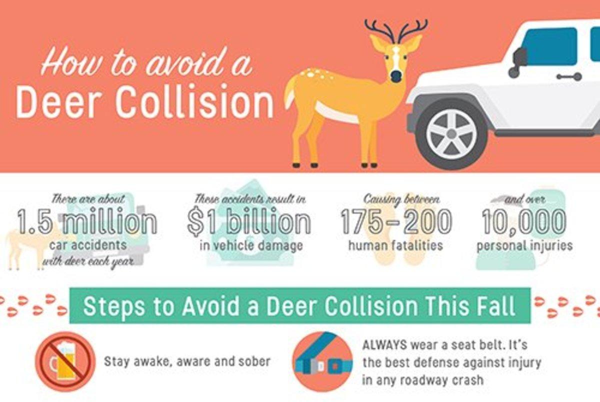 AVC Collision Stats