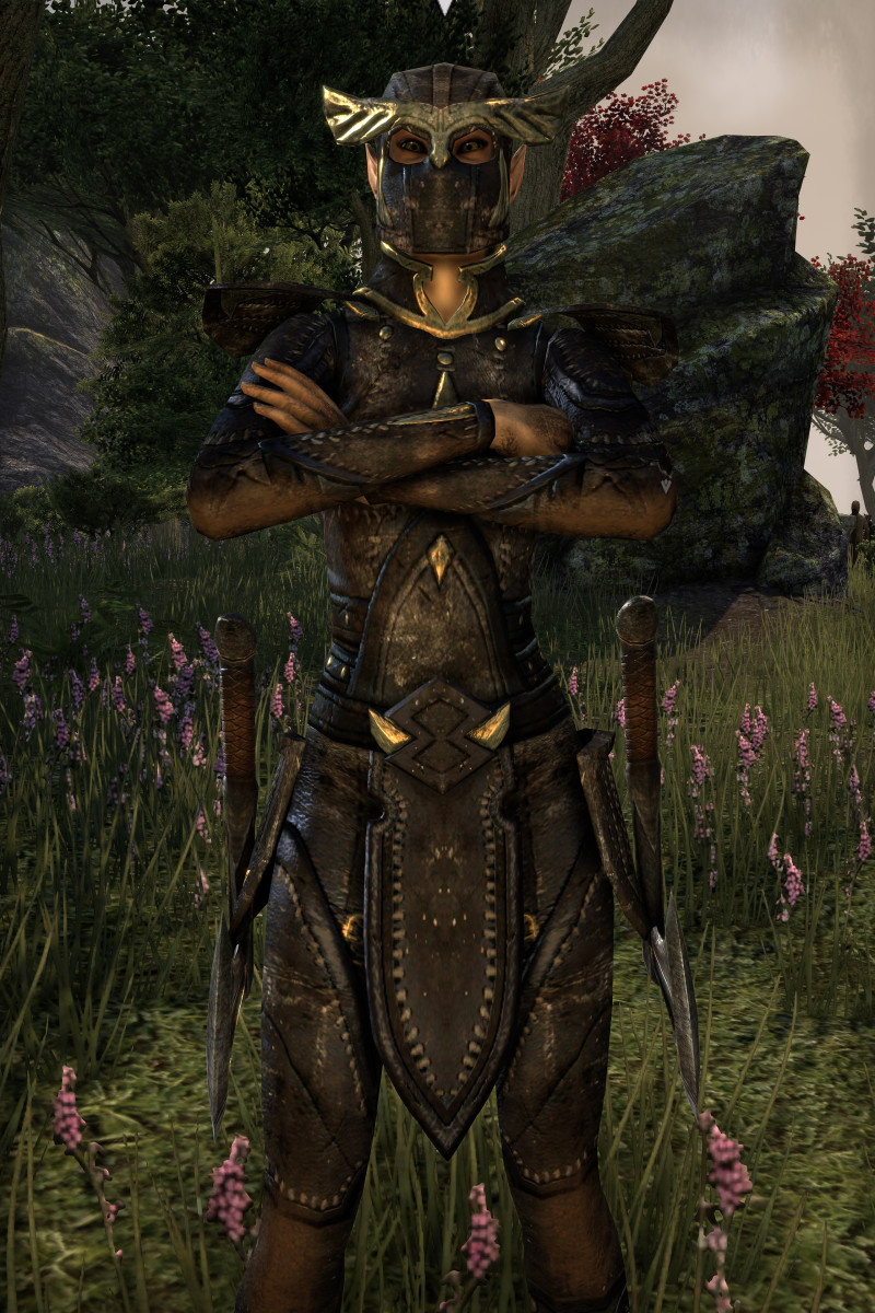 """Elder Scrolls Online"" characters who collect skill points from skyshards as well as from leveling quickly become far more powerful than those that only level up."