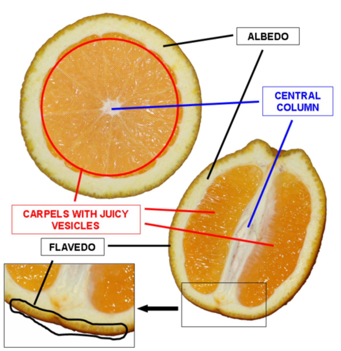 Inside the orange fruit
