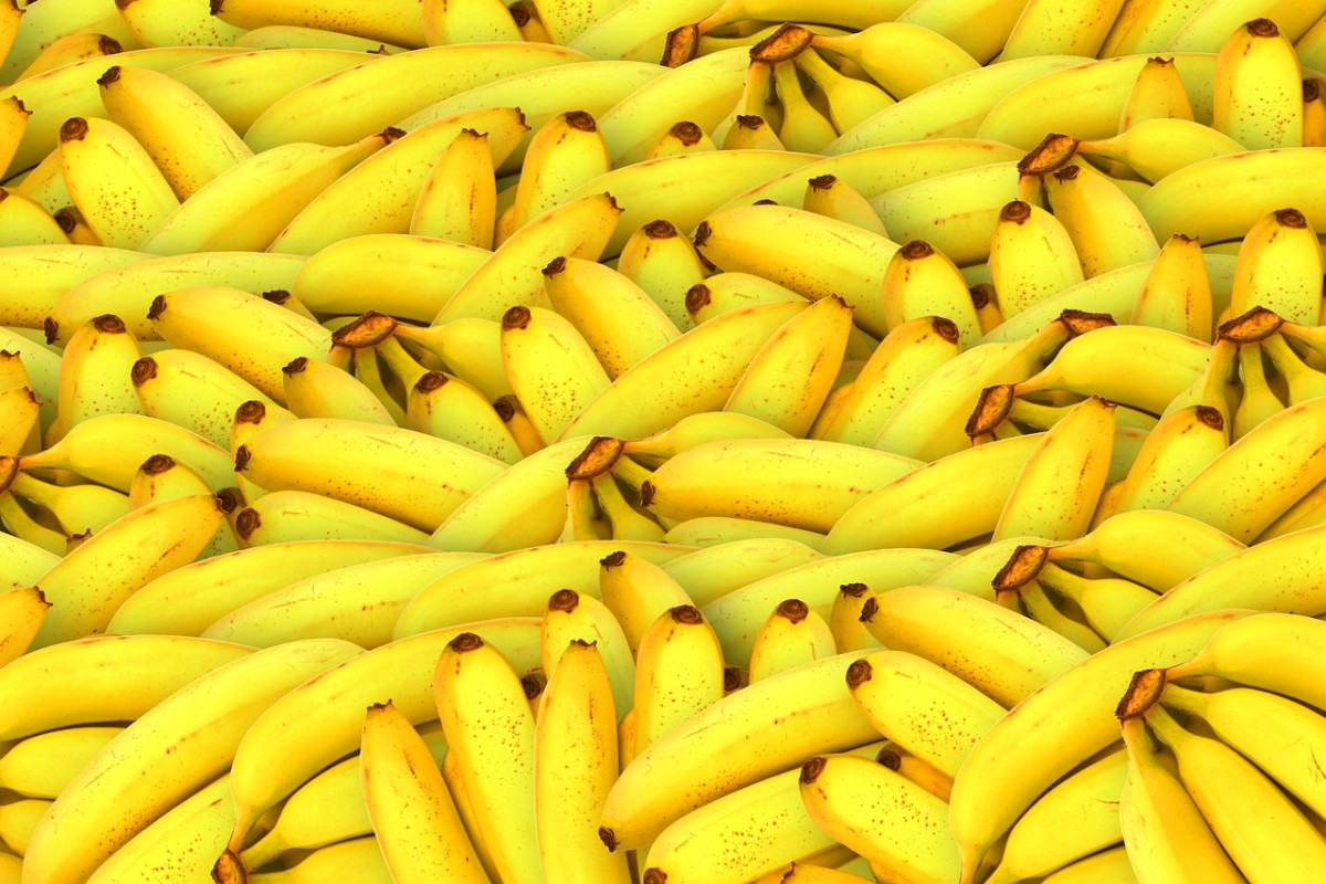 How to preserve bananas