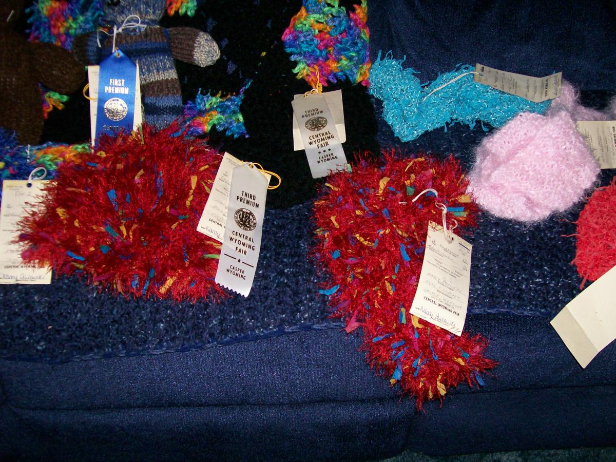 Fair entries...no sweaters.
