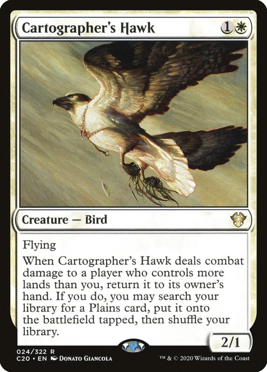 Cartographer's Hawk mtg
