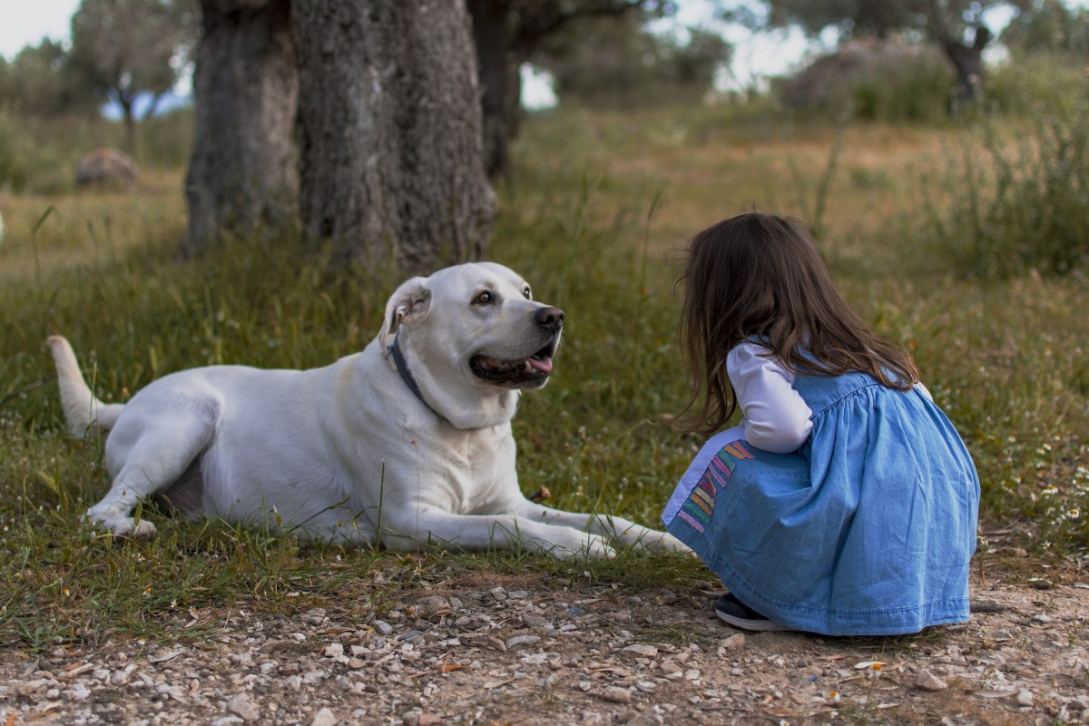 Kids can interact with nature in various ways, even from home. Caring for an animal—whether it's a dog or an ant!—is a great learning experience.