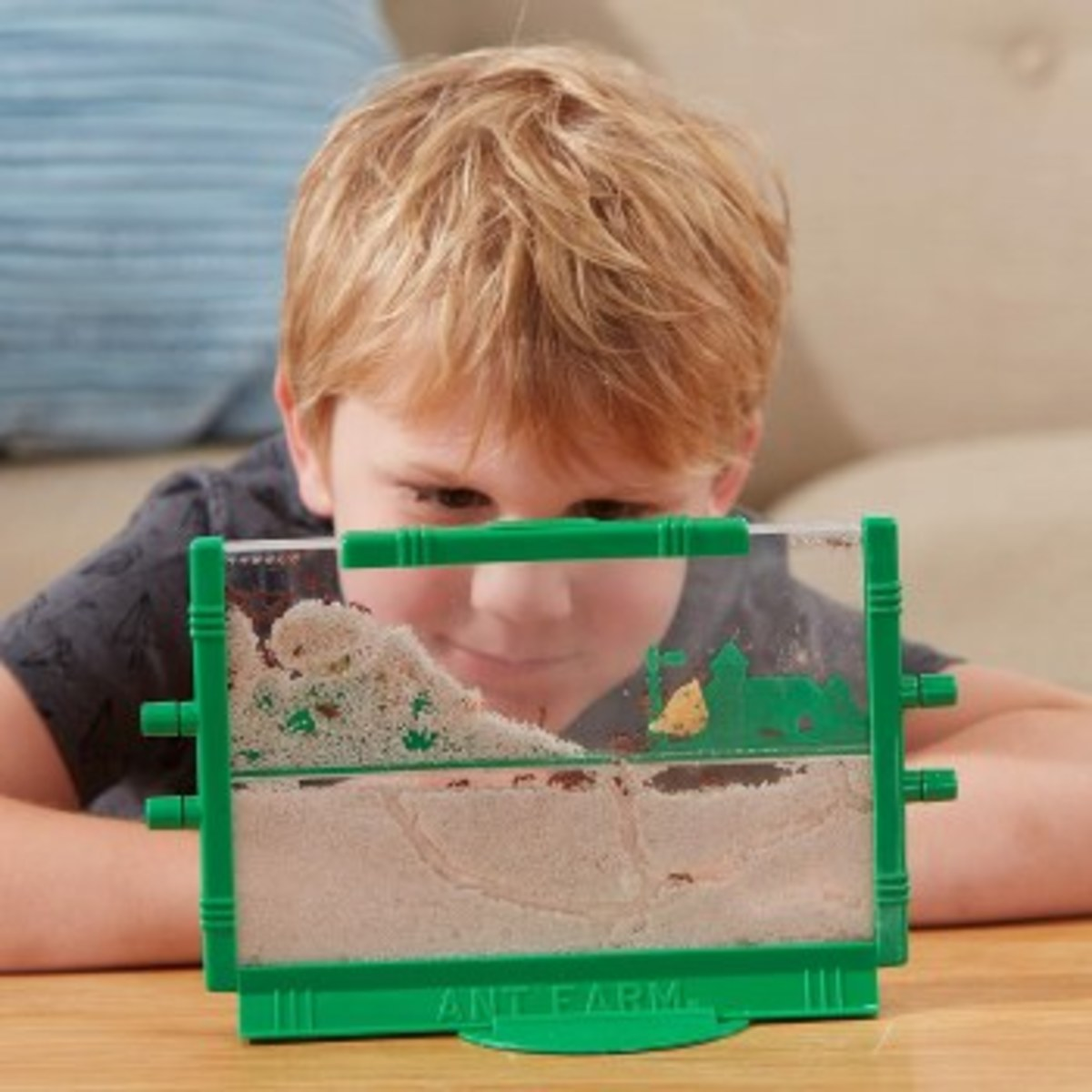 Ant farms inspire an interest in observation, research, and animal behavior.