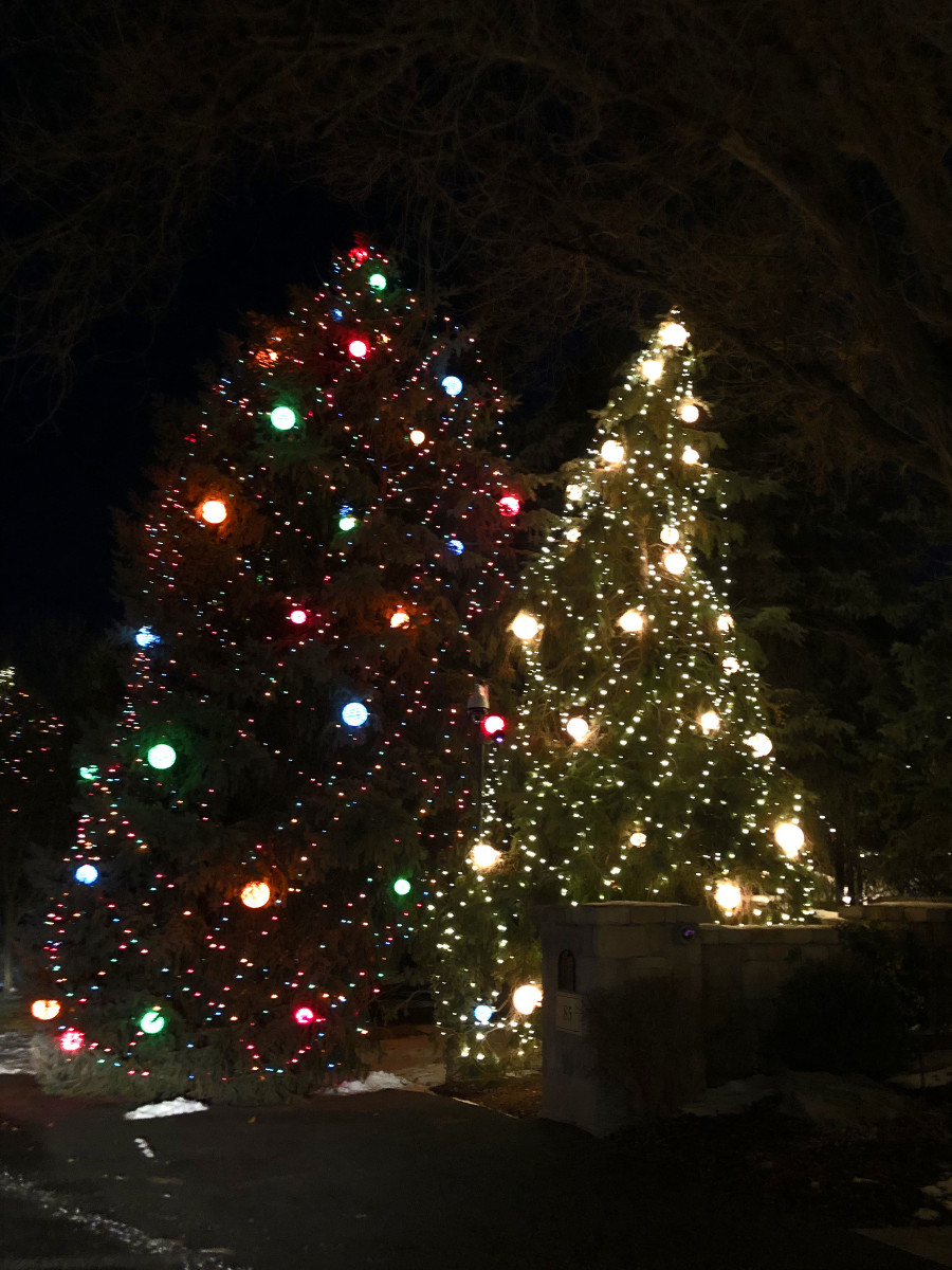 Here are some of the decorated trees at Meade Lane.