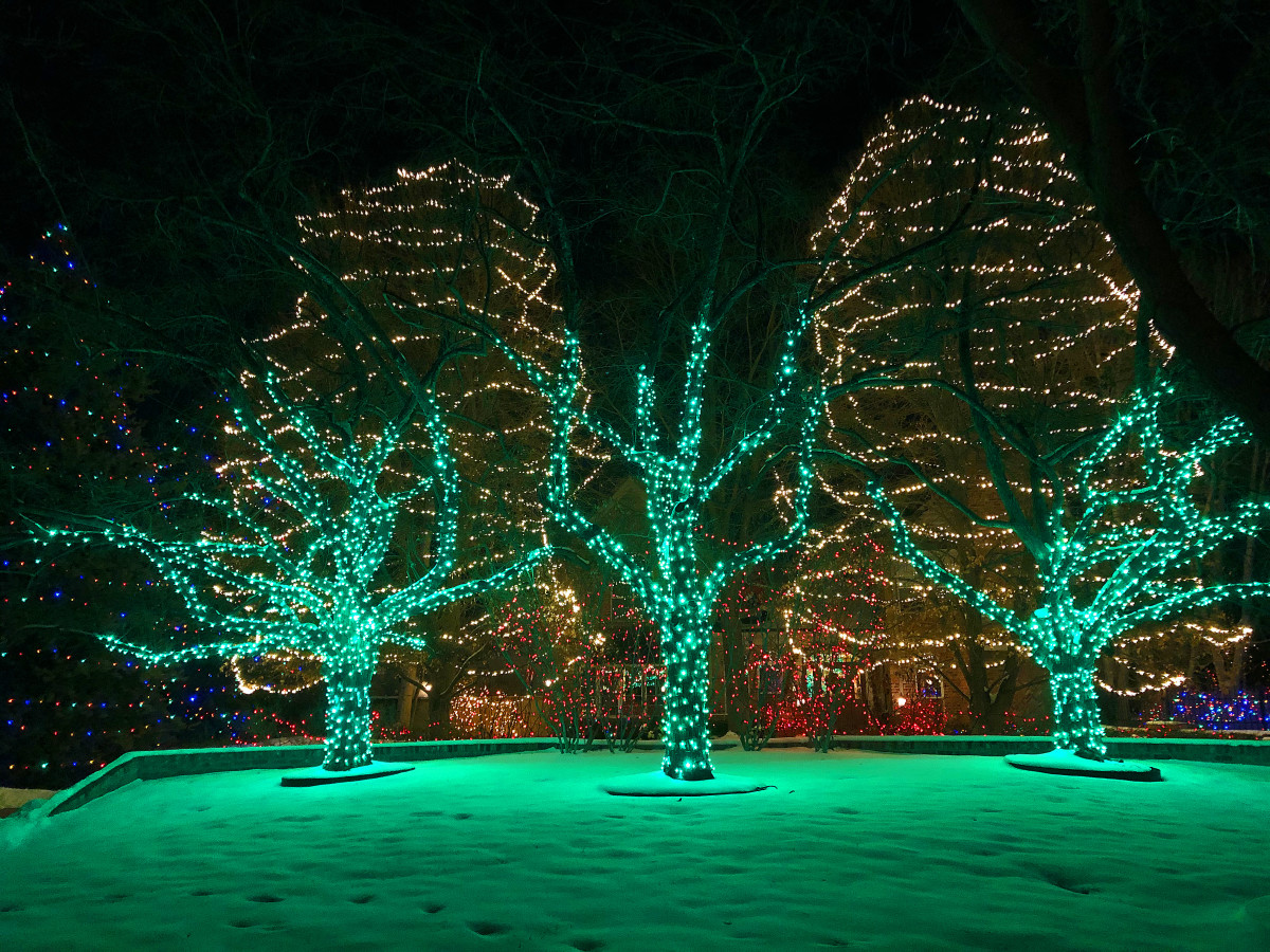 These green trees are just part of the decorations at 4 Mockingbird Ln.